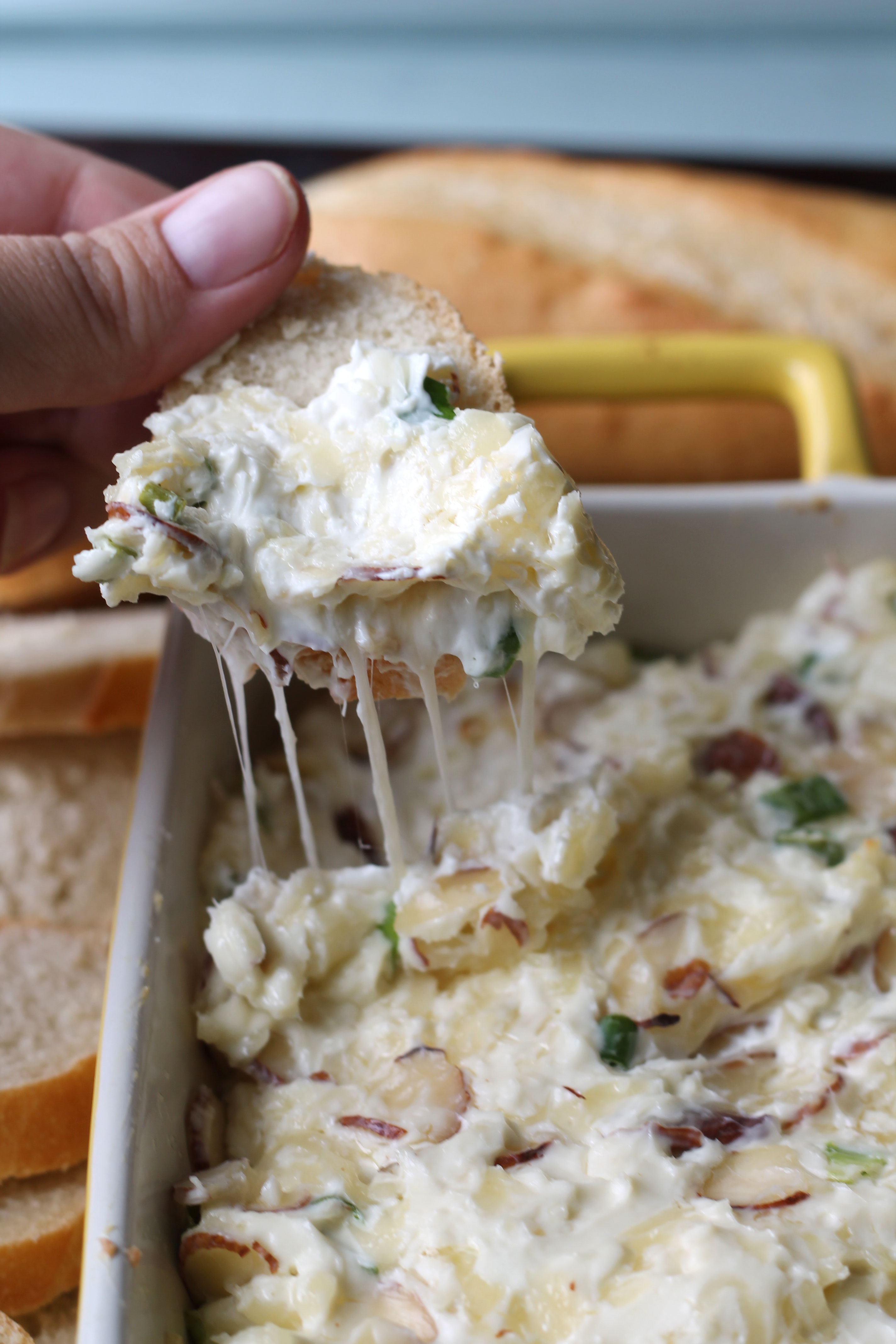 Hot Swiss Dip + Giveaway