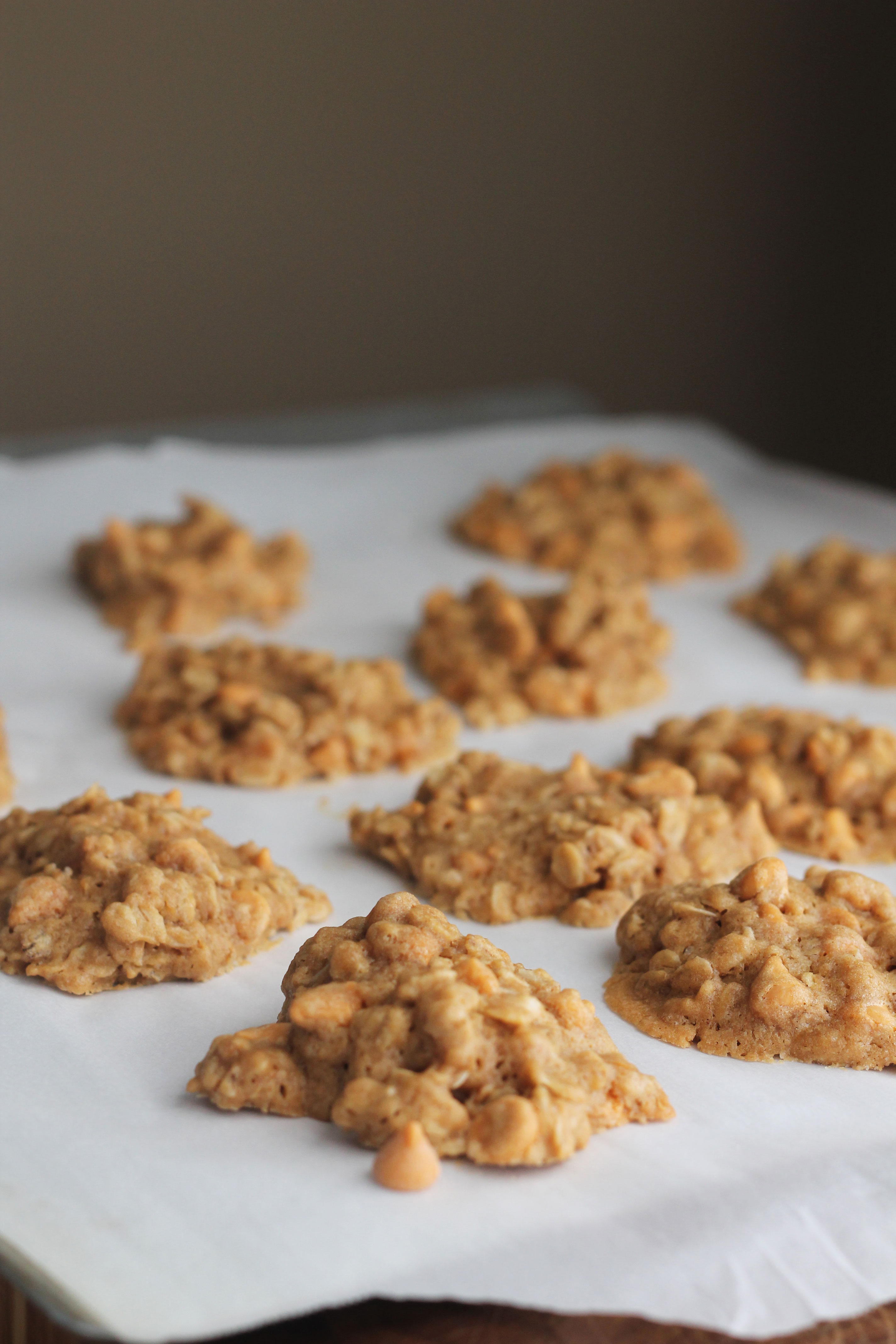 These are the best Butterscotch Oatmeal Cookies