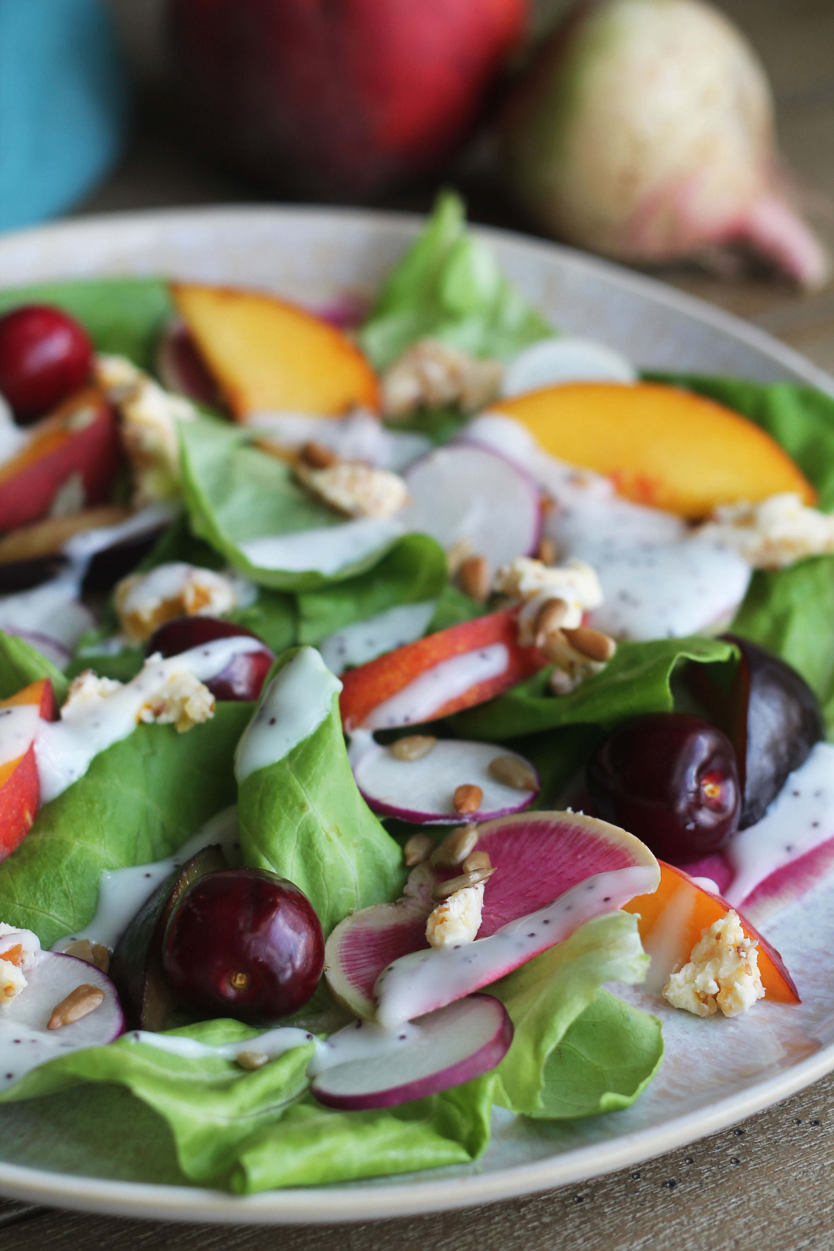 This summer salad combines all the sweet and tart stone fruits with some peppery radishes